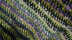 urban-yarns-jan-09-008
