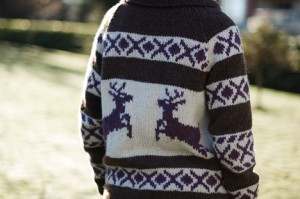 20110130-reindeer-back