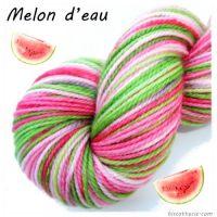 thumb_presentation-melon-deau