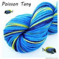 thumb_presentation-poisson-tang